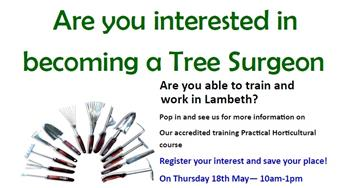 Image for Tree Surgeon course and paid position